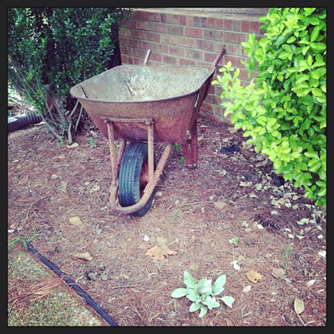 repurposed wheelbarrel as garden art