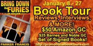 Bring Down the Furies Book Tour with Amazon and Barnes and Noble
