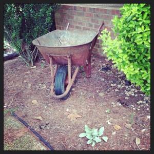 Repurposed Wheel Barrel into garden art!