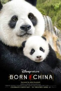 BORN IN CHINA – New Panda Clip & Fun Facts!